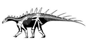 dacentrurus-armatus-wiki-full-width-300x155.jpg